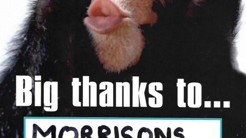Thanks_Morrisons_Dec18